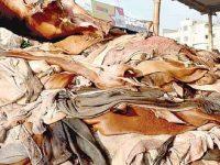 চামড়া শিল্পনগরীর সমস্যা চিহ্নিত করে দ্রুত সমাধান হবে: শিল্পমন্ত্রী