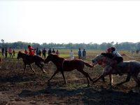 নড়াইলে ঐতিহ্যবাহী ঘোড়দৌড় প্রতিযোগিতা অনুষ্ঠিত
