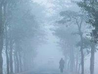 শীতজনিত রোগে ২৪ ঘণ্টায় আক্রান্ত ৪৩৪৮