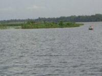 মেঘনা অববাহিকার প্রধান নদ-নদীর পানি বৃদ্ধি পাচ্ছে