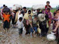 রোহিঙ্গাদের নিয়ে বৃহস্পতিবার আলোচনায় বসছে আন্তর্জাতিক সম্প্রদায়