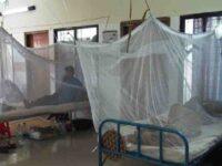 ডেঙ্গু: হাসপাতালে ভর্তি নতুন ৭ রোগী